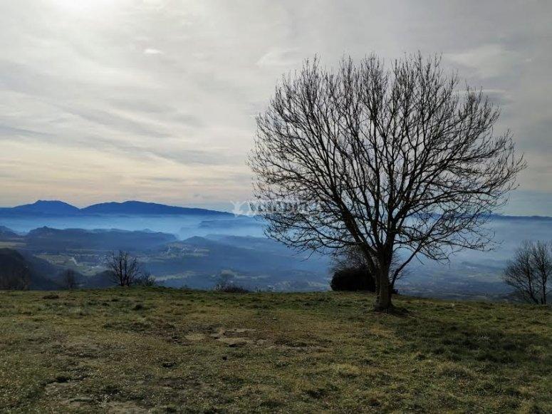 Vistas del Pirineo