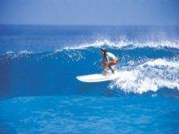 chica cogiendo una ola surfeando.jpg