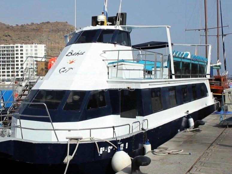 Catamaran en el puerto