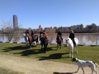 Horseback riding along the Guadalquivir River 2 h
