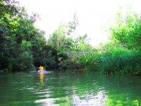 Kayak entre la frondosa vegetacion