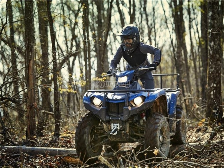 Yamaha in the woods