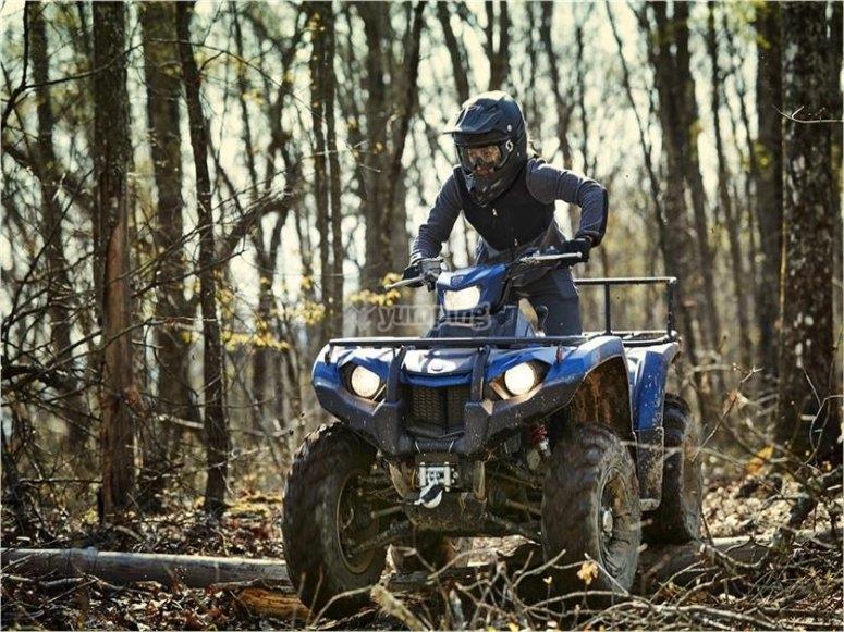 Por el bosque con el quad