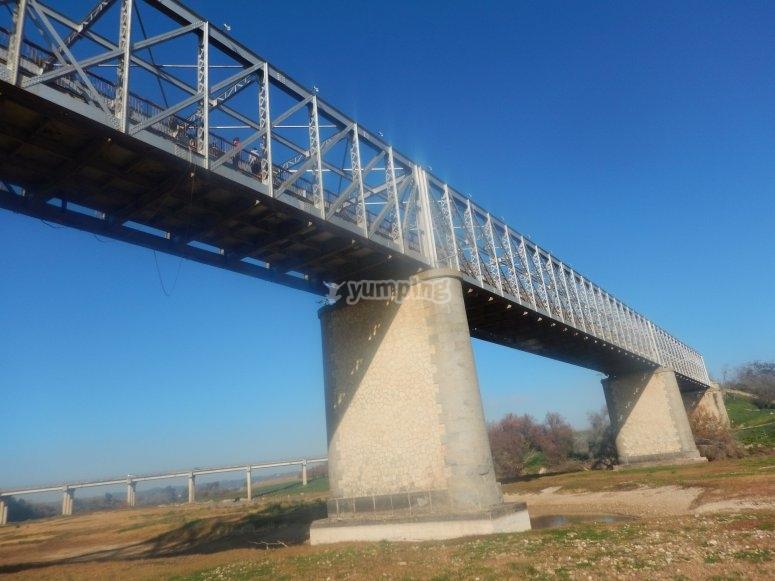从洛拉(Lora del Rio)地板看到的桥要蹦极
