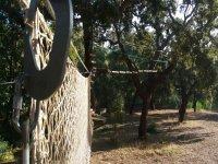 树妖巡回赛和CastellarCádiz攀岩墙