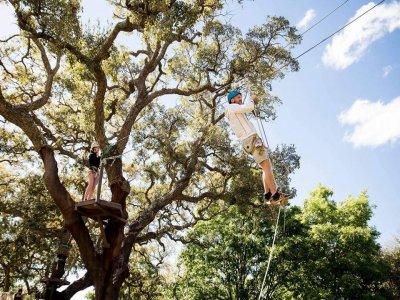 Pack 3 tree-top circuits Los Alcornocales 80 min