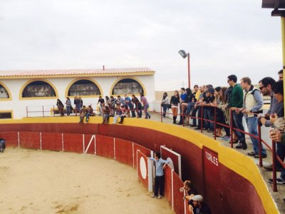 Pack karting BBQ heifer fighting & open bar Toledo