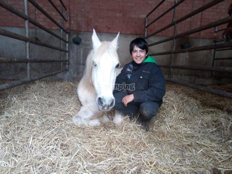 Clases con los caballos en granja escuela