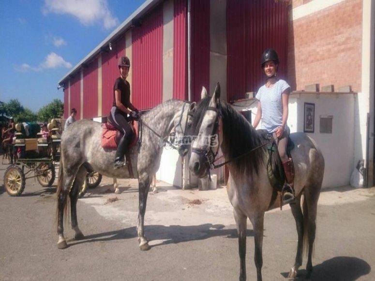 5 horse riding classes at farm school