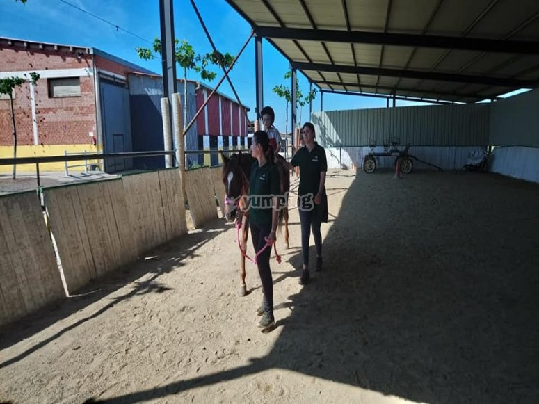 Horse riding classes for all levels in San Torcuato