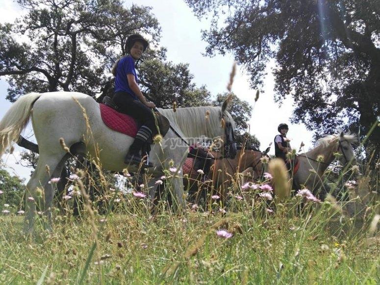 穿越圣托尔夸托的乡村骑马