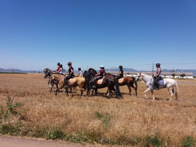Horse riding tour San Torcuato countryside 1h