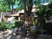 Wine tourism in Cuenca
