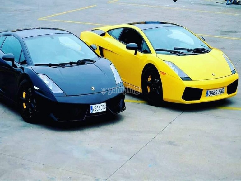 Lamboghini Gallardo in different colors