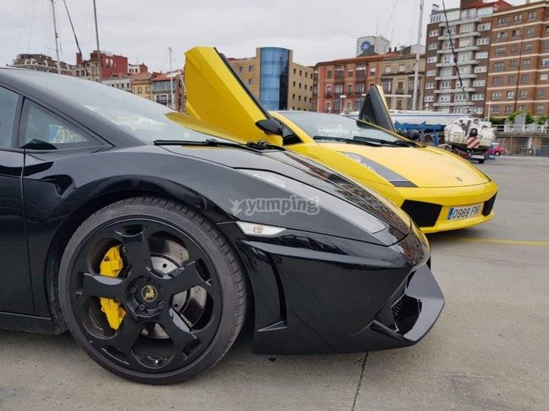 惊人的兰博基尼Gallardo 500CV