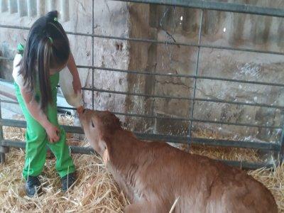 Visita granja escuela San Torcuato para familias