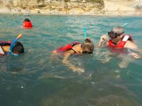 Snorkel and boat ride in Calafat 2 hours