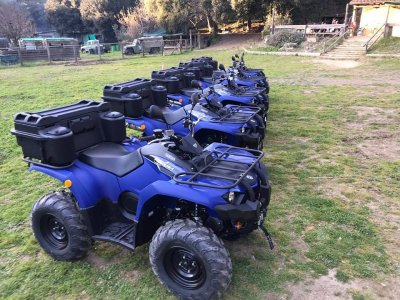 Quad route for 1-2 people Montnegre 2 hours