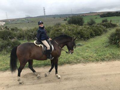 Horse riding La Janda shire 2 hours