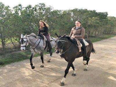 Horse riding 4 hours in Paterna de Rivera