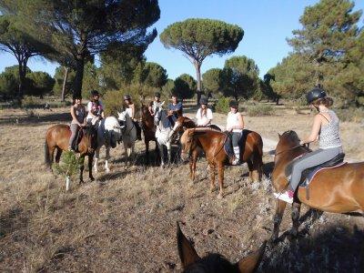 Campamento Multiaventura en Valladolid Quincenal