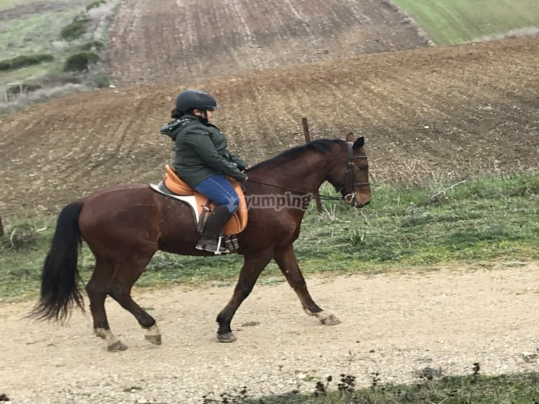 Riding in La Janda countryside