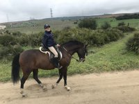 Horse riding for children in silica sand track
