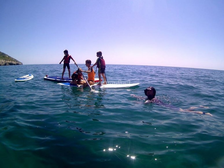 Paddle surf for all levels and ages