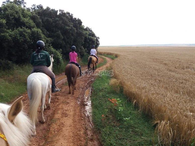 A group riding a horse along a muddy path
