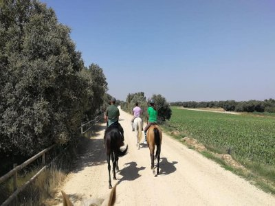 Horse ride tour 2.30h Santo Domingo de la Calzada