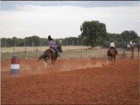 Carreras a caballo
