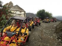 On the buggies