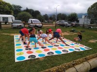 Family Twister