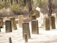 Doñana主题公园
