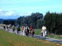 Siguiendo el camino a caballo