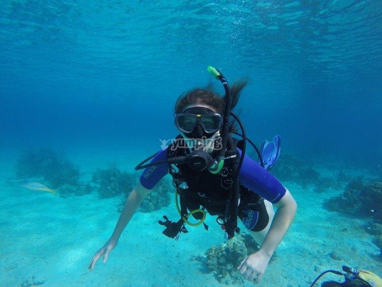Basic principles of PADI diving