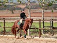 Trotando con el caballo