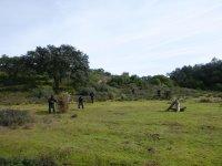 Monte con árboles para protegerte de los disparos