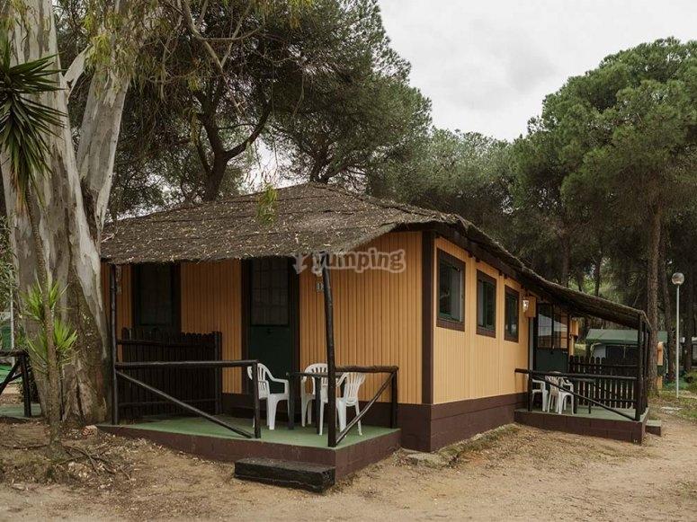 Un bungaló entre pinos