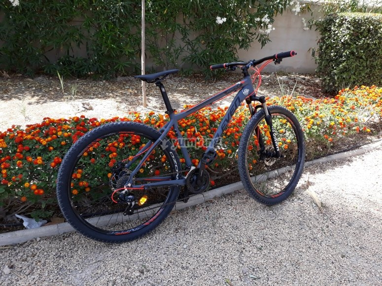 Bicycles for rent in Calpe