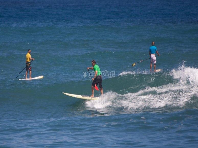 Cogiendo olas en tabla de paddle surf