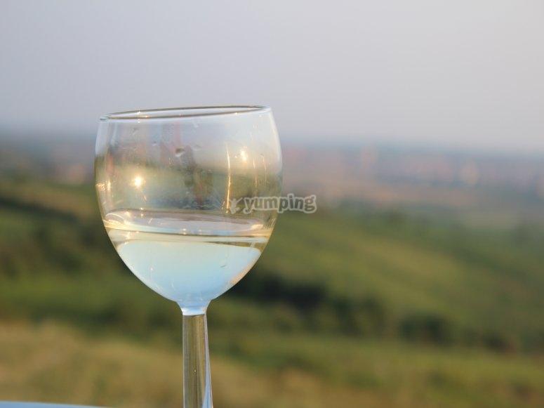 雷克纳(Requena)的葡萄酒旅游