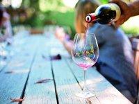 Wine cellar tour and tasting