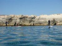Ven y disfruta del paddle surf