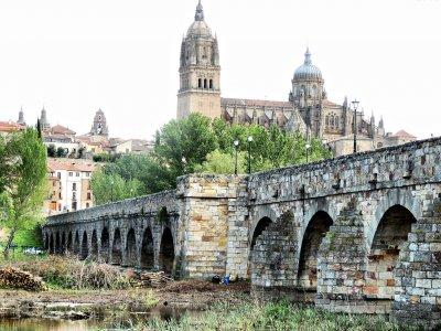 Visita guiada Patrimonio Histórico Salamanca 7 h