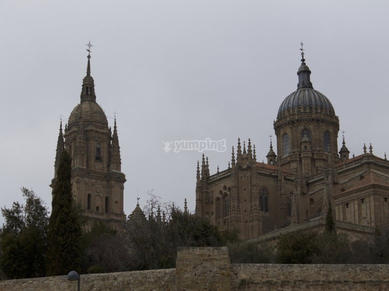 Visita guidata della Cattedrale di Salamanca