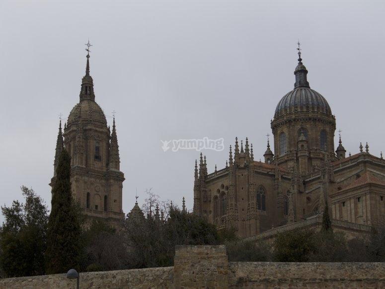 Salamanca Cathedral guided tour