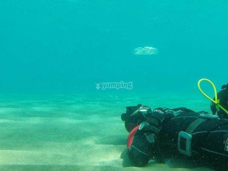 Buzo en el fondo marino