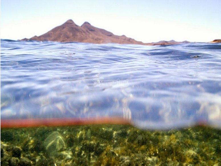 Open Water Diver en Cabo de Gata