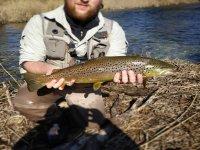 Resultados de pesca en sur de Castilla y León